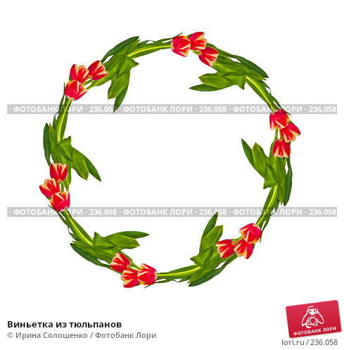 Купить «Виньетка из тюльпанов», иллюстрация № 236058 (c) Ирина Солошенко / Фотобанк Лори