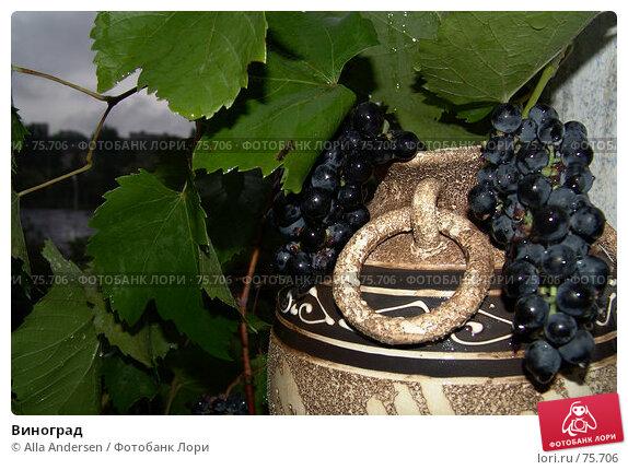 Виноград, фото № 75706, снято 2 сентября 2006 г. (c) Alla Andersen / Фотобанк Лори