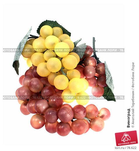 Купить «Виноград», фото № 78622, снято 29 августа 2007 г. (c) Анатолий Теребенин / Фотобанк Лори