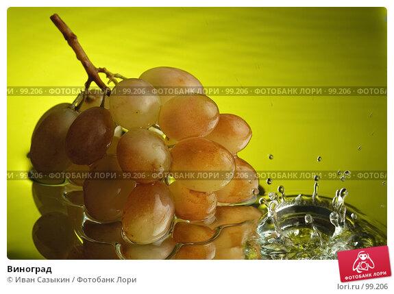 Купить «Виноград», фото № 99206, снято 6 декабря 2003 г. (c) Иван Сазыкин / Фотобанк Лори