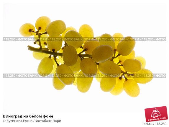 Виноград на белом фоне, фото № 118230, снято 16 ноября 2007 г. (c) Бутинова Елена / Фотобанк Лори