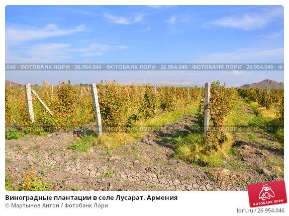 Поселок звездный иркутская область фото мало