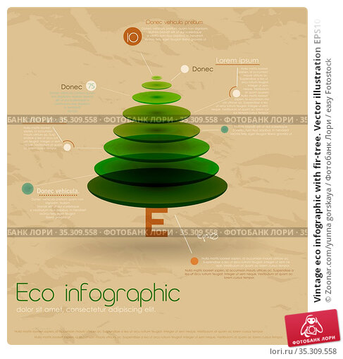 Vintage eco infographic with fir-tree. Vector illustration EPS10. Стоковое фото, фотограф Zoonar.com/yunna gorskaya / easy Fotostock / Фотобанк Лори