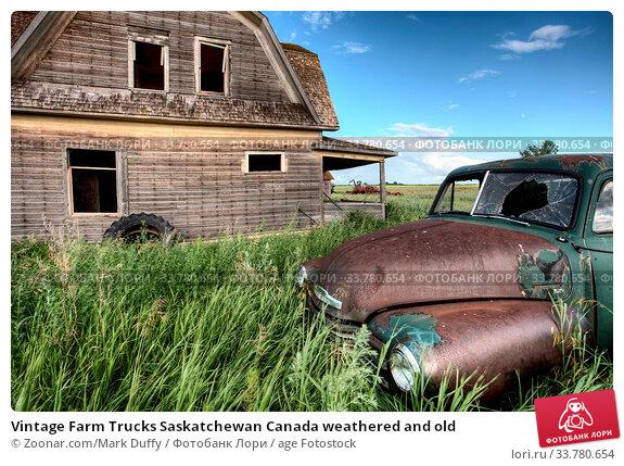 Купить «Vintage Farm Trucks Saskatchewan Canada weathered and old», фото № 33780654, снято 8 июля 2020 г. (c) age Fotostock / Фотобанк Лори