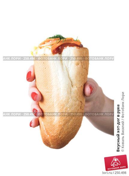Вкусный хот-дог в руке, фото № 250498, снято 6 октября 2007 г. (c) Коваль Василий / Фотобанк Лори