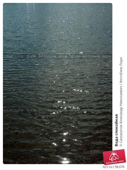 Купить «Вода спокойная», фото № 38670, снято 24 мая 2005 г. (c) Саломатов Александр Николаевич / Фотобанк Лори