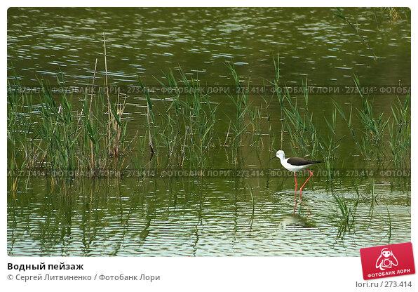 Водный пейзаж, фото № 273414, снято 5 мая 2008 г. (c) Сергей Литвиненко / Фотобанк Лори