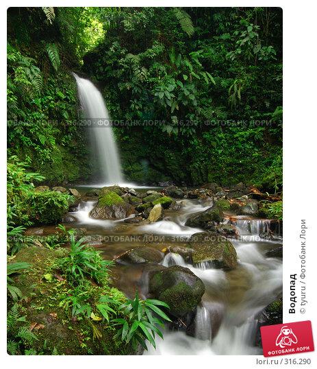 Купить «Водопад», фото № 316290, снято 16 февраля 2006 г. (c) tyuru / Фотобанк Лори