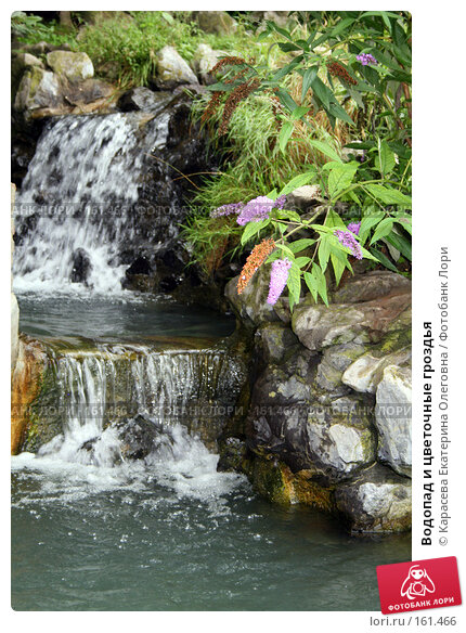 Купить «Водопад и цветочные гроздья», фото № 161466, снято 17 августа 2007 г. (c) Карасева Екатерина Олеговна / Фотобанк Лори