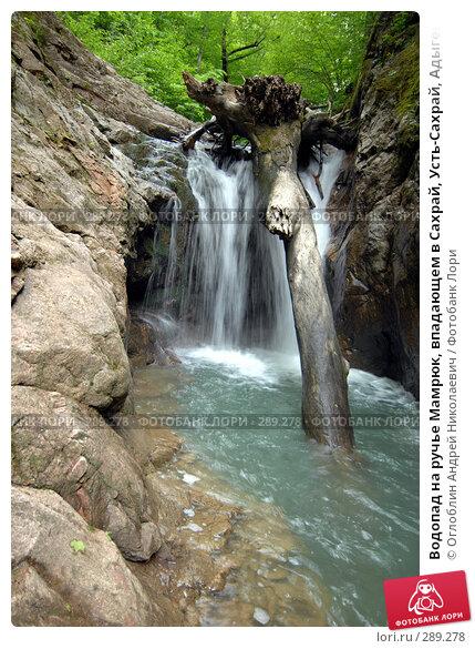 Водопад на ручье Мамрюк, впадающем в Сахрай, Усть-Сахрай, Адыгея, фото № 289278, снято 17 мая 2008 г. (c) Оглоблин Андрей Николаевич / Фотобанк Лори