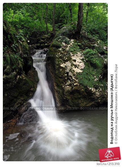 Водопад на ручье Мешоко (Адыгея), фото № 213310, снято 15 июля 2007 г. (c) Оглоблин Андрей Николаевич / Фотобанк Лори