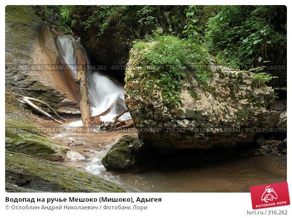 Водопад на ручье Мешоко (Мишоко), Адыгея, фото № 316262, снято 8 июня 2008 г. (c) Оглоблин Андрей Николаевич / Фотобанк Лори