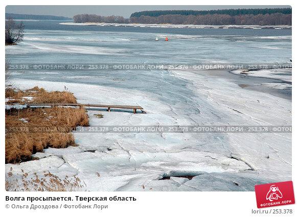 Волга просыпается. Тверская область, фото № 253378, снято 10 апреля 2005 г. (c) Ольга Дроздова / Фотобанк Лори