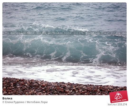 Купить «Волна», фото № 233274, снято 10 сентября 2005 г. (c) Елена Руденко / Фотобанк Лори