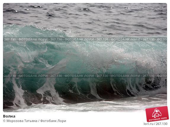 Волна, фото № 267130, снято 17 апреля 2008 г. (c) Морозова Татьяна / Фотобанк Лори