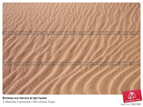 Волны на песке в пустыне, фото № 290990, снято 28 января 2008 г. (c) Максим Горпенюк / Фотобанк Лори