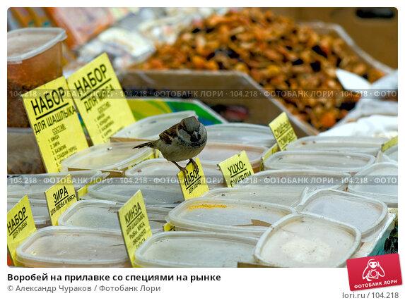 Купить «Воробей на прилавке со специями на рынке», фото № 104218, снято 14 декабря 2017 г. (c) Александр Чураков / Фотобанк Лори