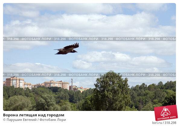 Купить «Ворона летящая над городом», фото № 318298, снято 20 апреля 2018 г. (c) Парушин Евгений / Фотобанк Лори