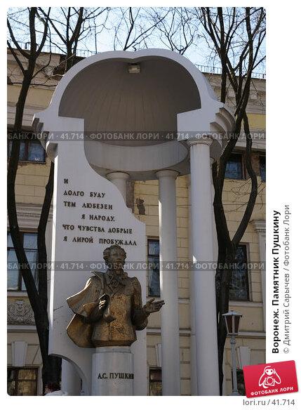 Купить «Воронеж. Памятник Пушкину», фото № 41714, снято 21 марта 2007 г. (c) Дмитрий Сарычев / Фотобанк Лори
