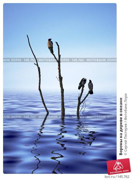 Вороны на дереве в океане, фото № 145762, снято 10 июня 2007 г. (c) Сергей Пестерев / Фотобанк Лори