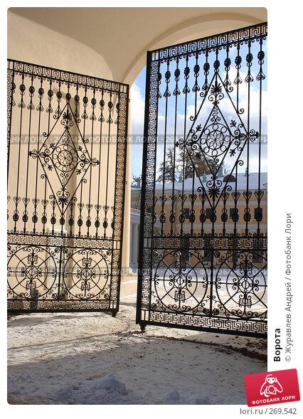 Ворота, эксклюзивное фото № 269542, снято 3 февраля 2008 г. (c) Журавлев Андрей / Фотобанк Лори
