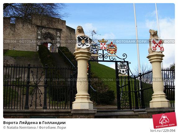 Ворота Ляйдена в Голландии, эксклюзивное фото № 229094, снято 3 марта 2008 г. (c) Natalia Nemtseva / Фотобанк Лори