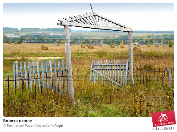 Ворота в поле, фото № 89354, снято 22 сентября 2007 г. (c) Parmenov Pavel / Фотобанк Лори