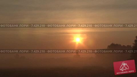 Восход над полем, много тумана. Timelapse. Скорость х128. Стоковое видео, видеограф Mike The / Фотобанк Лори