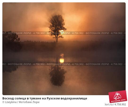 Восход солнца в тумане на Рузском водохранилище. Стоковое фото, фотограф Liseykina / Фотобанк Лори