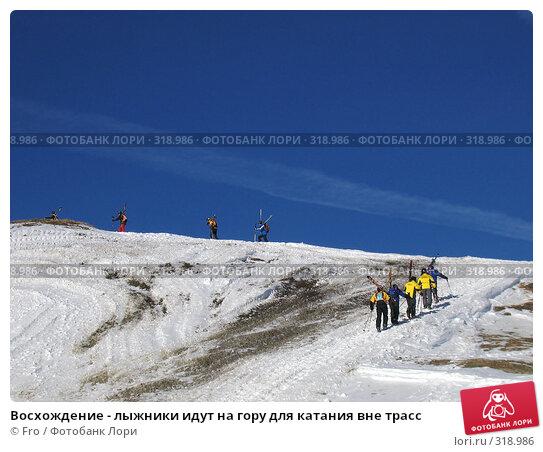 Купить «Восхождение - лыжники идут на гору для катания вне трасс», фото № 318986, снято 3 февраля 2006 г. (c) Fro / Фотобанк Лори