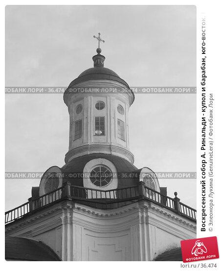 Воскресенский собор А. Ринальди - купол и барабан, юго-восток. Почеп, фото № 36474, снято 25 сентября 2017 г. (c) Элеонора Лукина (GenuineLera) / Фотобанк Лори