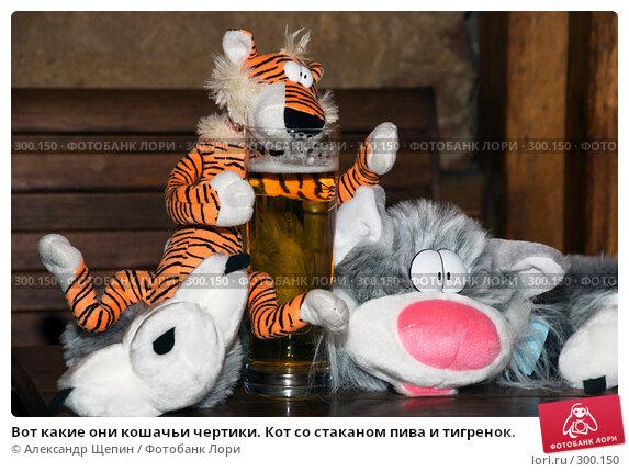 Вот какие они кошачьи чертики. Кот со стаканом пива и тигренок., эксклюзивное фото № 300150, снято 24 мая 2008 г. (c) Александр Щепин / Фотобанк Лори