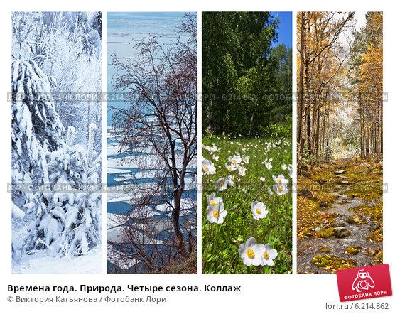 Купить «Времена года. Природа. Четыре сезона. Коллаж», фото № 6214862, снято 30 июля 2014 г. (c) Виктория Катьянова / Фотобанк Лори