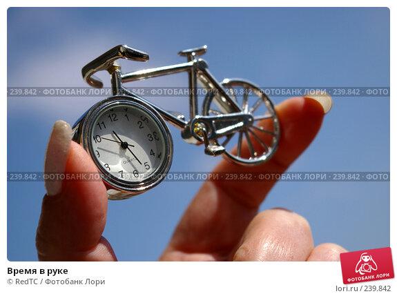 Время в руке, фото № 239842, снято 29 марта 2008 г. (c) RedTC / Фотобанк Лори