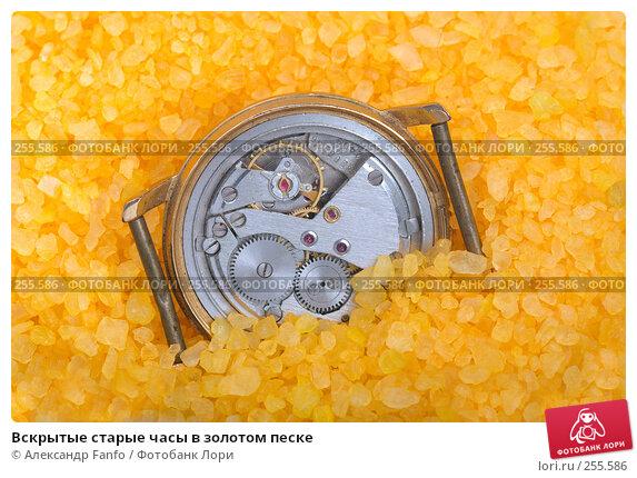 Вскрытые старые часы в золотом песке, фото № 255586, снято 21 января 2017 г. (c) Александр Fanfo / Фотобанк Лори