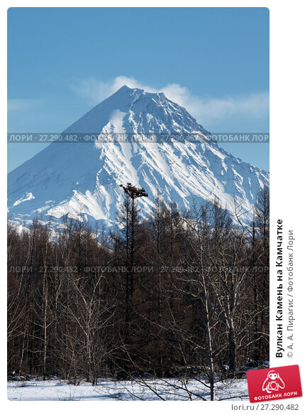 Купить «Вулкан Камень на Камчатке», фото № 27290482, снято 7 января 2016 г. (c) А. А. Пирагис / Фотобанк Лори