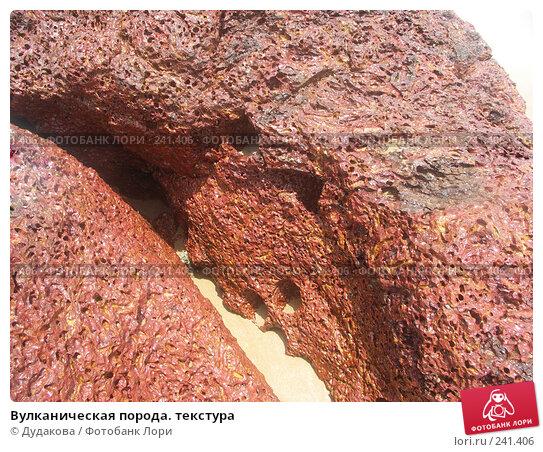 Вулканическая порода. текстура, фото № 241406, снято 24 марта 2008 г. (c) Дудакова / Фотобанк Лори