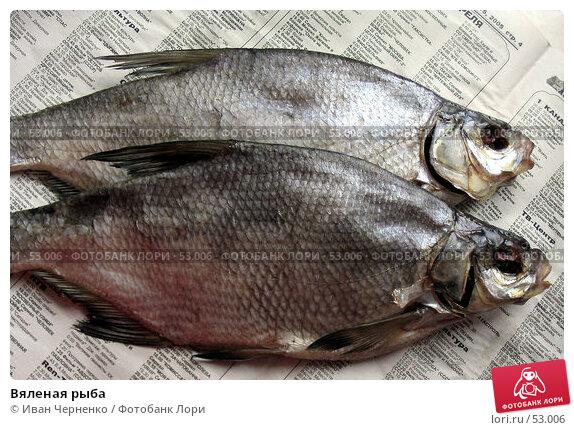 Купить «Вяленая рыба», фото № 53006, снято 30 апреля 2005 г. (c) Иван Черненко / Фотобанк Лори
