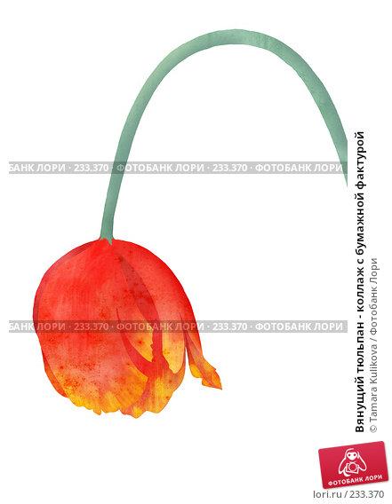 Купить «Вянущий тюльпан - коллаж с бумажной фактурой», иллюстрация № 233370 (c) Tamara Kulikova / Фотобанк Лори