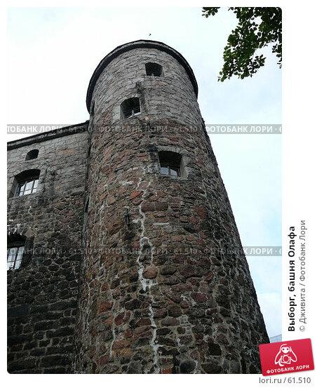 Выборг, башня Олафа, фото № 61510, снято 6 июля 2007 г. (c) Дживита / Фотобанк Лори