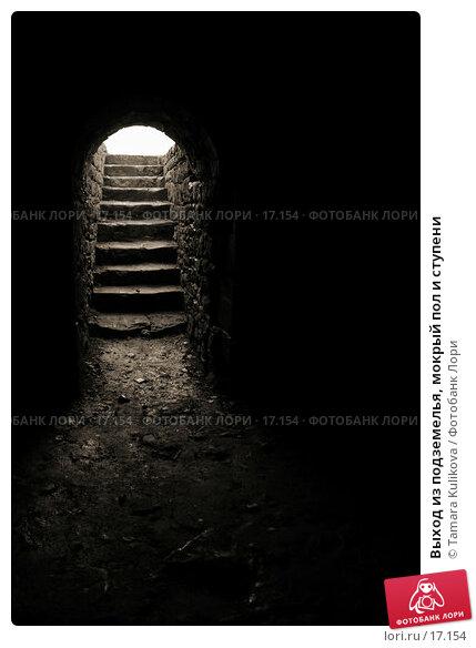 Выход из подземелья, мокрый пол и ступени, фото № 17154, снято 15 февраля 2007 г. (c) Tamara Kulikova / Фотобанк Лори
