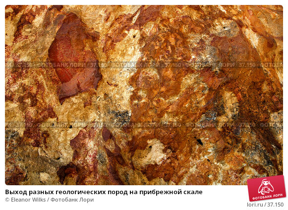Купить «Выход разных геологических пород на прибрежной скале», фото № 37150, снято 24 мая 2007 г. (c) Eleanor Wilks / Фотобанк Лори