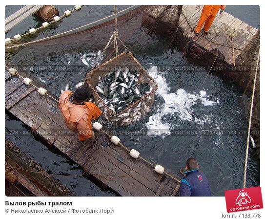 Вылов рыбы тралом, фото № 133778, снято 10 июля 2005 г. (c) Николаенко Алексей / Фотобанк Лори