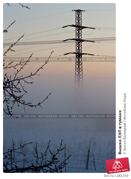 Вышка ЛЭП в тумане, фото № 243310, снято 11 февраля 2008 г. (c) Антон Белицкий / Фотобанк Лори