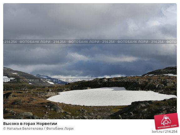 Высоко в горах Норвегии, фото № 214254, снято 28 августа 2007 г. (c) Наталья Белотелова / Фотобанк Лори