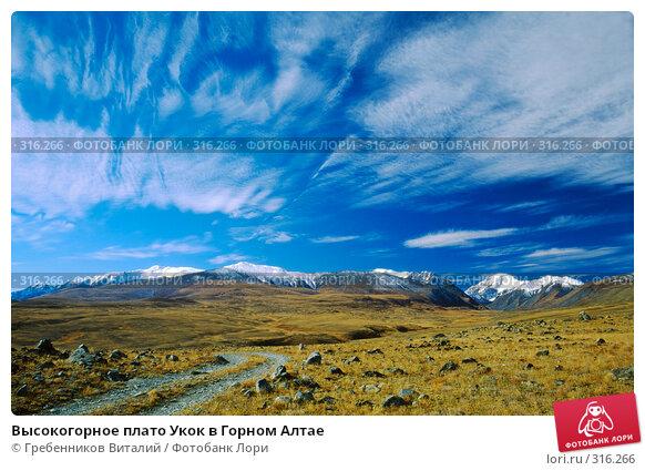 Купить «Высокогорное плато Укок в Горном Алтае», фото № 316266, снято 26 апреля 2018 г. (c) Гребенников Виталий / Фотобанк Лори