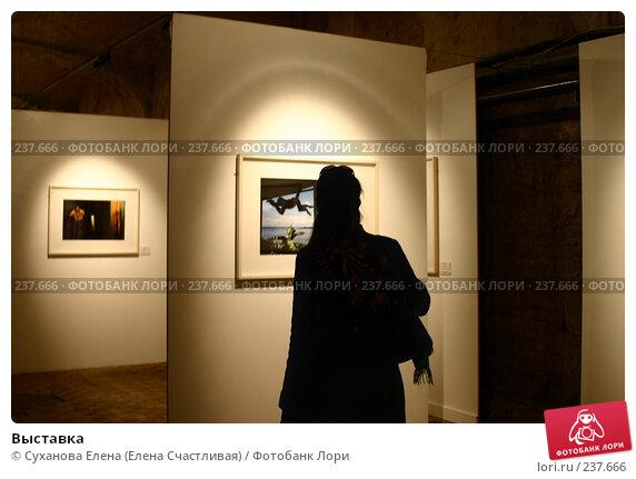 Выставка, фото № 237666, снято 29 марта 2008 г. (c) Суханова Елена (Елена Счастливая) / Фотобанк Лори