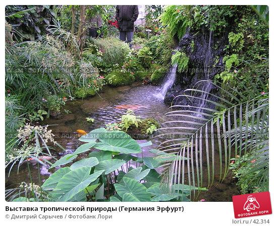 Выставка тропической природы (Германия Эрфурт), фото № 42314, снято 14 апреля 2006 г. (c) Дмитрий Сарычев / Фотобанк Лори