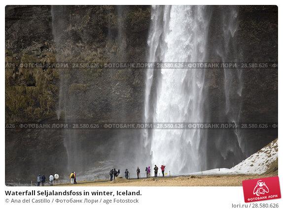 Купить «Waterfall Seljalandsfoss in winter, Iceland.», фото № 28580626, снято 16 марта 2018 г. (c) age Fotostock / Фотобанк Лори