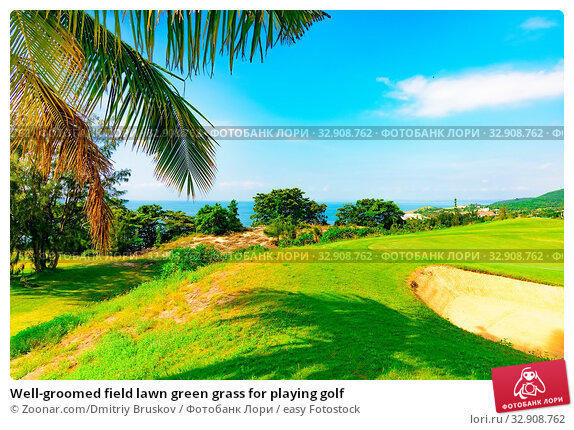 Well-groomed field lawn green grass for playing golf. Стоковое фото, фотограф Zoonar.com/Dmitriy Bruskov / easy Fotostock / Фотобанк Лори
